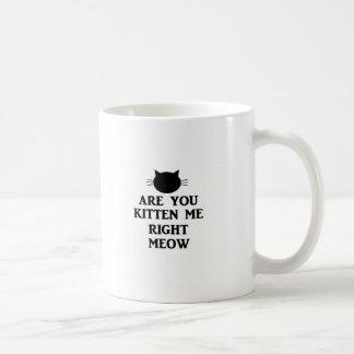 Está usted gatito yo maullido correcto taza