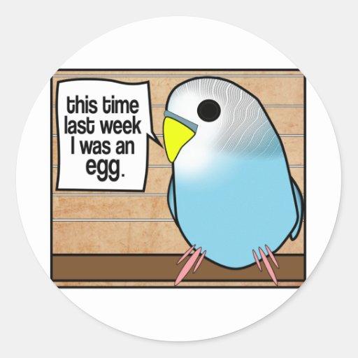 Esta vez era la semana pasada un huevo pegatina redonda