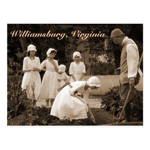 Establecimiento de las semillas en Williamsburg co Tarjeta Postal