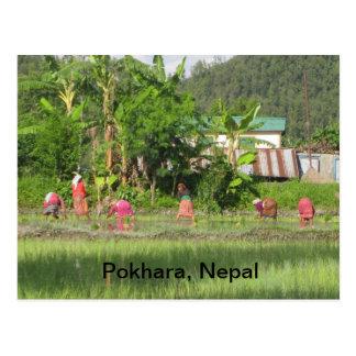 Establecimiento de tiempo en Pokhara Postal