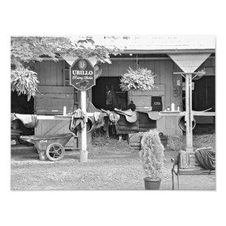"""Establos """"asilo de Saratoga del caballo """" Arte Con Fotos"""