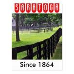 Establos de Godolphin y de Darley en Saratoga Tarjetas Postales