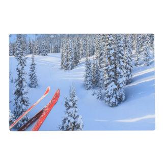 Estación de esquí cristalina de la montaña, cerca salvamanteles