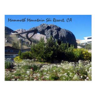 Estación de esquí de Mammoth Mountain CA Tarjetas Postales