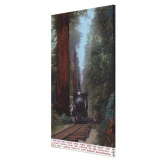 Estación de ferrocarril grande del árbol lona envuelta para galerias