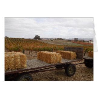 Estación de la cosecha en Doce Robles, Paso Robles Tarjeta De Felicitación