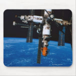 Estación espacial en órbita tapete de ratones