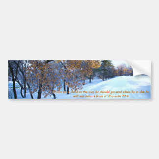 Estación hermosa del invierno pegatina de parachoque