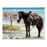 Estacionamiento prohibido tarjeta postal
