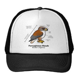 Estadísticas ferruginosas del halcón gorra