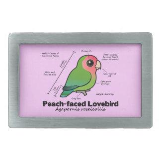 estadísticas Melocotón-hechas frente del Lovebird Hebilla De Cinturón Rectangular