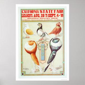 Estado 1909 justo de California Póster