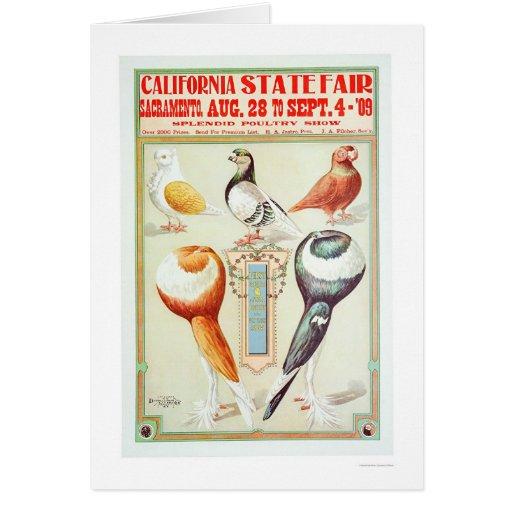 Estado 1909 justo de California Tarjeta