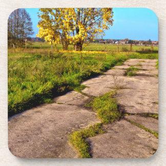 Estado de ánimo áureo de otoño en el octubre posavaso