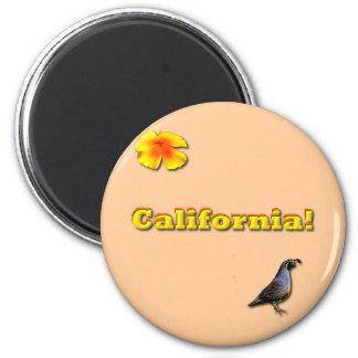 Estado de California Imán Redondo 5 Cm