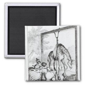 Estado de la jirafa, 1829 iman de nevera
