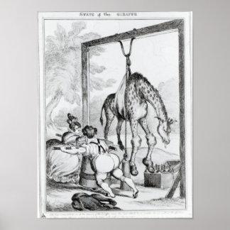 Estado de la jirafa, 1829 póster