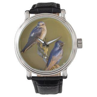 Estado de los E.E.U.U., Washington. Púrpura Reloj