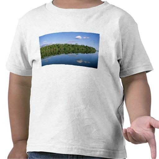 Estado de Mato Grosso, el Amazonas, el Brasil. Camisetas