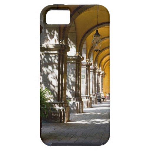 Estado de México, Guanajuato, San Miguel de Funda Para iPhone SE/5/5s