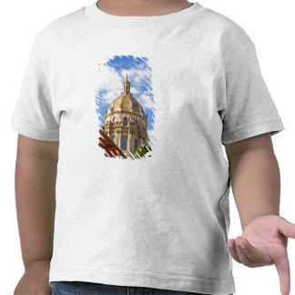 Estado de Norteamérica, México, Guanajuato, San 2 Camisetas
