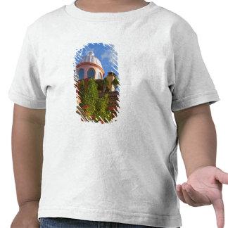 Estado de Norteamérica, México, Guanajuato, San 4 Camisetas