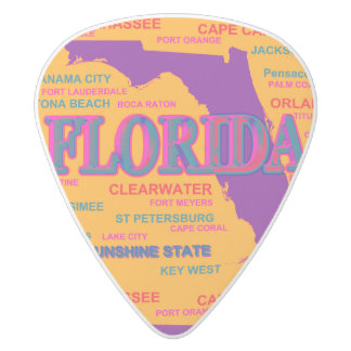 Estado del mapa de la Florida, Miami, Orlando Púa De Guitarra Delrin Blanco