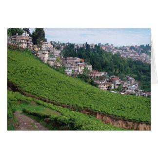 Estado feliz del té del valle Bengala Occidental Tarjeta