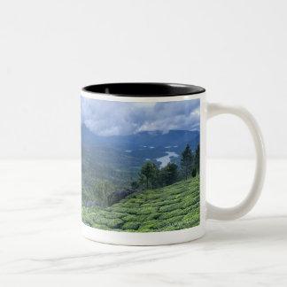 Estado la India de Kerala de la plantación de té 2 Taza De Café De Dos Colores