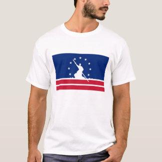 Estado unido bandera América Virginia de la ciudad Playera