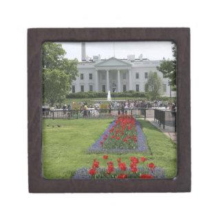 Estados Unidos, Washington, C.C. El lado norte Caja De Joyas De Calidad