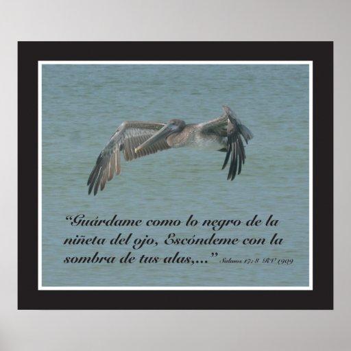 Estafa Pelicano (cártel) del 17:8 de Salmos Poster