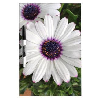 Estafeta de primavera pizarras blancas de calidad