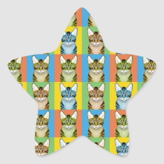Estallido-Arte del dibujo animado de Ocicat Colcomanias Forma De Estrella Personalizadas