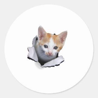 Estallido del gatito pegatinas redondas