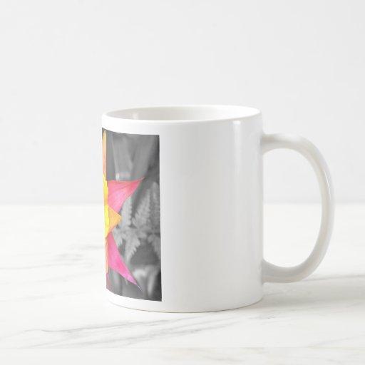 Estallido negro y gris del color taza clásica