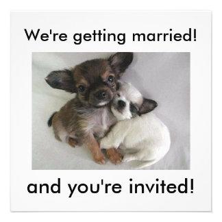 ¡Estamos consiguiendo casados! ¡, y le invitan! Invitación Personalizada
