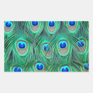 estampado de animales del pavo real - plumas pegatina rectangular
