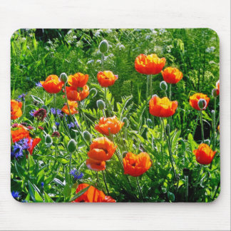 Estampado de flores anaranjado hermoso de la amapo tapetes de ratones