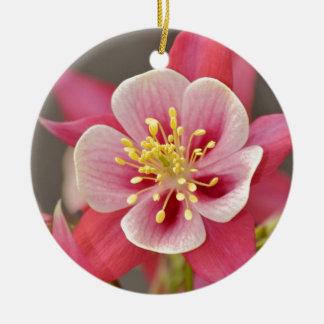 Estampado de flores columbine rosado adorno de navidad