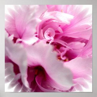 Estampado de flores rosado del Peony Impresiones