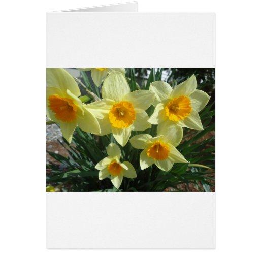 Estampado de plores amarillo tarjeta de felicitación