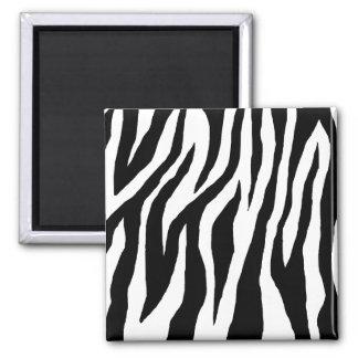 Estampado de zebra negro y blanco imán cuadrado