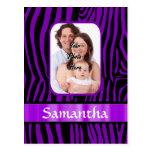 Estampado de zebra púrpura postal