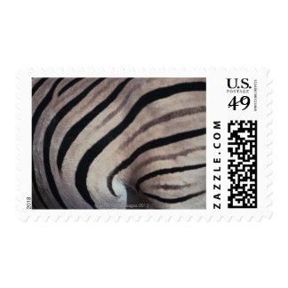 Estampado de zebra sello postal