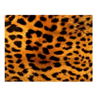 estampado leopardo femenino moderno elegante tarjeta postal