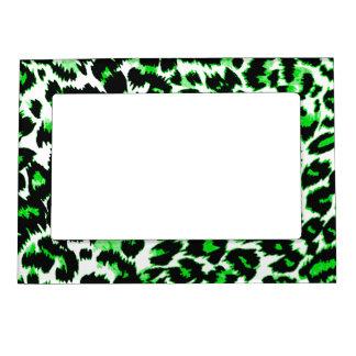 Estampado leopardo verde foto de imanes