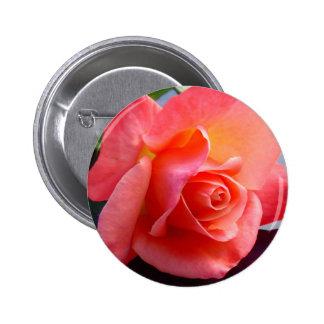 Estándar color de rosa, botón redondo de la pin redondo de 2 pulgadas