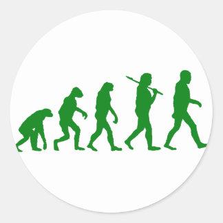 Estándar de la evolución - verde pegatinas redondas