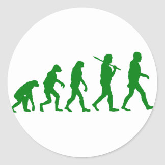 Estándar de la evolución - verde pegatina redonda